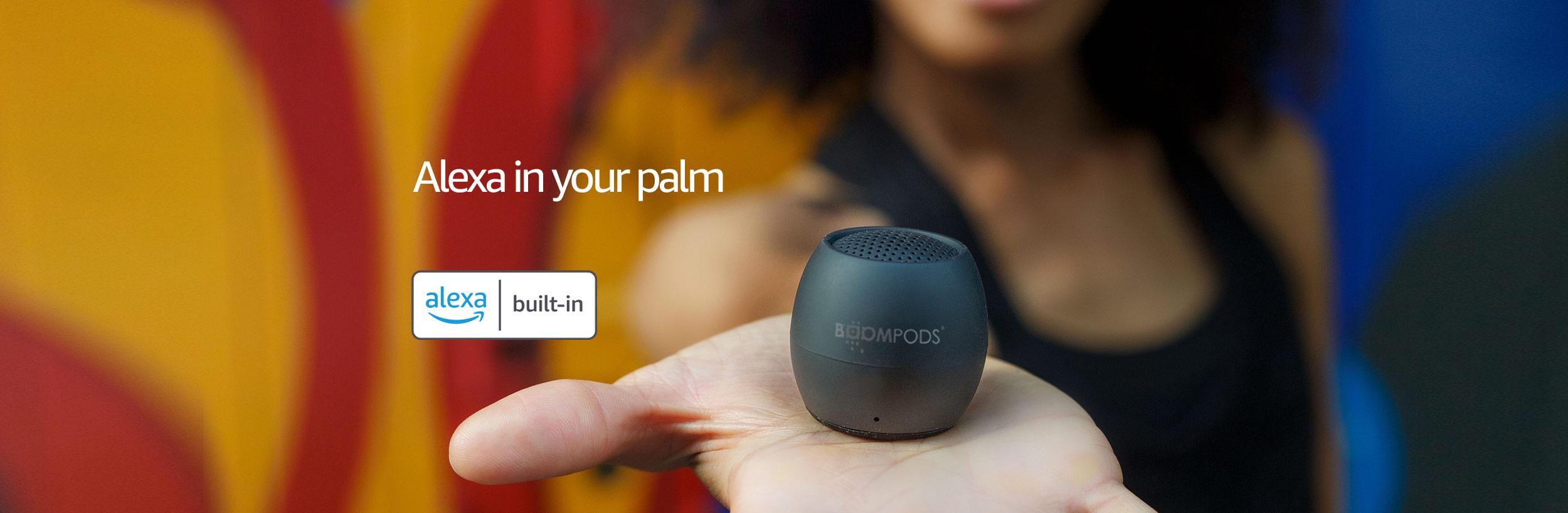 Boompods Zero Talk Speaker