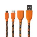 c-type-orange
